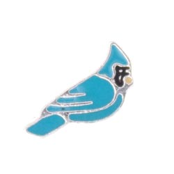 Floating Charm - Blue Cardinal | Animal Charm| Animal Floating Charm | Totem Lockets | Floating Charm Lockets