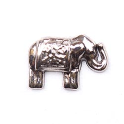 Floating Charm - Elephant | Animal Charm| Animal Floating Charm | Totem Lockets | Floating Charm Lockets
