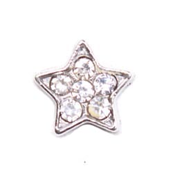 Floating Charm - Star| Nature Charm| Nature Floating Charm | Totem Lockets | Floating Charm Lockets