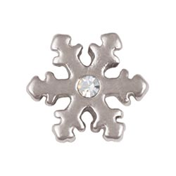 Floating Charm - Snowflake | Nature Charm| Nature Floating Charm | Totem Lockets | Floating Charm Lockets
