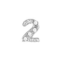Floating Charm - Number 2 | Silver| Number Charm| Numerical Floating Charm | Totem Lockets | Floating Charm Lockets